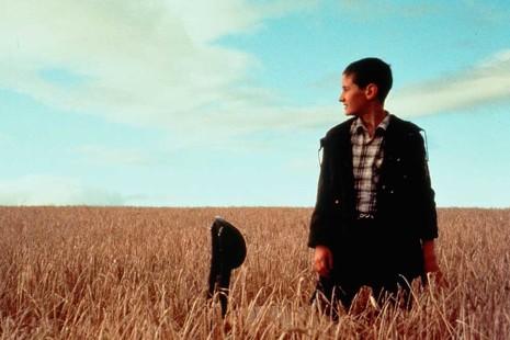 20 años de 'Ratcatcher', la película que nos asomó a la belleza de los paisajes decrépitos