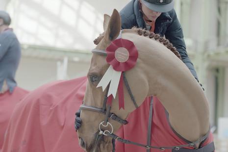 Cómo triunfar en la prueba de equitación más exclusiva del mundo