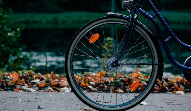 Cómodas, bonitas y ecológicas: 5 modelos de bicicleta ideales para pedalear este otoño